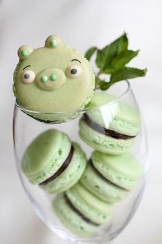 mint + chocolate macarons