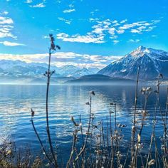 Beautiful Landscape photography : Spring vibes at lake Thun