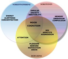 Neurotransmitters and their effects on emotion / Neurotransmisores y Emociones Psychiatric Nursing, Mood Enhancers, Neurology, Anatomy And Physiology, Neurons, Pharmacology, Nursing Students, Your Brain, How To Relieve Stress