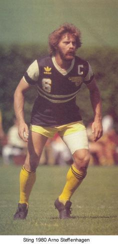 Chicago Sting