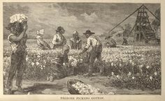 Slavery in america   Slavery in America Resources