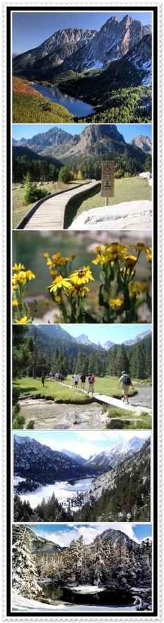 la Guingueta d´Aneu - Nou Camping - Nou Camping es un centro turístico situado en el centro del Pirineo de Lleida, muy cercano al Parque Nacional de Aiguestortes y Sant Mauricio. Es el punto ideal donde empezar la visita a todos los lag...