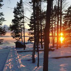 November snow in Finland #healthyfood #healthyfuture #thisisfinland #snow