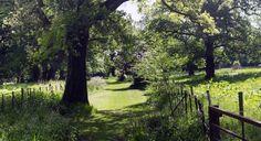 Scotland garden shel