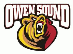 Here is what Gabriel's old team, the Owen Sound Attack of the Ontario Hockey League, put out recently following the OHL's 2014 draft. Description from attackhockey.com. I searched for this on bing.com/images