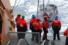 Arctic voyager escapes - Ocean Navigator - Web Exclusives 2014