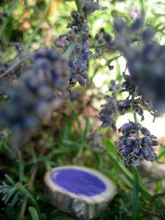 smorbrod syltetoy: Farben suchen im Garten