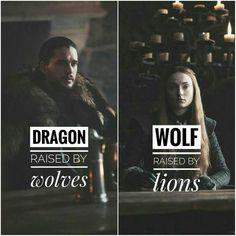 Game Of Thrones Memes 2019 - Jon and Sansa - Hintergrundbilder Art Game Of Thrones Meme, Arte Game Of Thrones, Game Of Thrones Wolves, Game Of Thrones Sansa, Game Of Thrones Books, Game Of Thrones Dragons, Sansa Stark, Game Of Thrones Funny, Entertainment