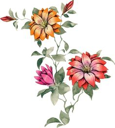 Botanical Flowers, Botanical Art, Flower Art Images, Fabric Paint Designs, Birth Flowers, Bunch Of Flowers, Peony Flower, Vintage Flowers, Japanese Art