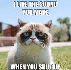 Why Is the Grumpy Cat Always Angry?