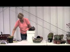 How to plant a basket with succulents