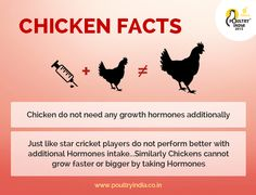Poultry India 2015 – is a unique platform in South Asia which provides information, knowledge and exposure to companies and organization to address the common problems within the Poultry Industry. Visit Us today at Poultry India 2015 @ www.poultryindia.co.in