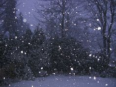 Music for Special Kids: Dance Like Snowflakes - A Winter Song