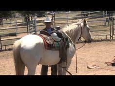 Australian Horse Trainer, Len Judd