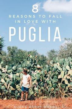 Fantastic beaches, wonderful people and the prettiest of cacti - there are many reasons to fall in love with Puglia, Italy, here are just 8!