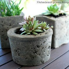 Fabriquez des pots de fleurs en béton