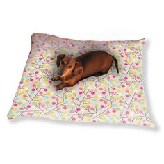 Uneekee Lollypops Grow On Trees Dog Pillow Luxury Dog / Cat Pet Bed
