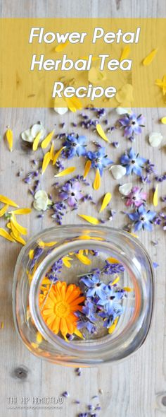 Fresh Flower Petal herbal tea recipe from The Hip Homestead #herbaltea #freshflower #flowerpetal