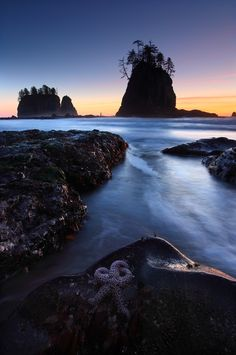 Pacific Coast of Olympic National Park