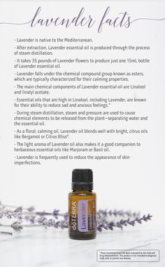 Apply lavender essential oil to your upper lip and temples during a migraine attack for some relief. 10 Facts You May Not Know about doTERRA Lavender Essential Oil. Lavender Essential Oil Uses, Lavender Uses, Lavender Doterra, Oils For Life, Oils For Sleep, Aromatherapy Oils, Doterra Essential Oils, Stress, Young Living
