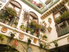 Smukt dekoreret gårdhave. #Cordoba #Andalusien #Patio