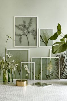 Love the idea of pressed leaves and flowers in simple frames. #inspiration