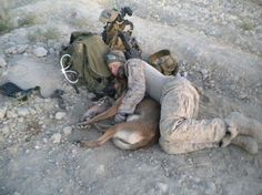 Soldier and his dog .
