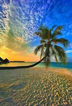 Maldives Beach, Ocean Beach, Beautiful Sunset, Beautiful Places, Travel Around The World, Around The Worlds, Look At The Sky, Sunset Pictures, Sunset Pics