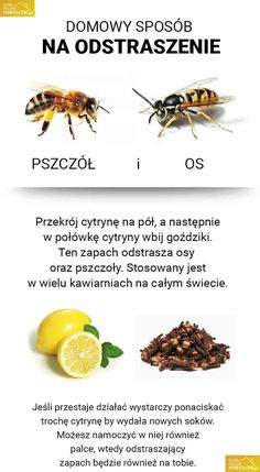 Domowy sposób na ból gardła - DomPelenPomyslow.pl Best Cookbooks, Save The Bees, Diy Cleaners, Home Hacks, Good Advice, Good To Know, Cleaning Hacks, Ale, Fun Facts