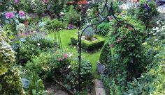 Luscious garden Glasgow Scotland by designer HELPINHAND J. Ridge.