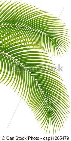 Vector - bladeren, palm, boompje, witte, achtergrond - stock illustratie, royalty-vrije illustraties, stock clip art symbool, stock clipart symbolen, logo, line art, EPS beeld, beelden, grafiek, grafieken, tekening, tekeningen, vector afbeelding, artwork, EPS vector kunst