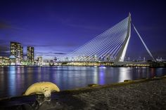 Erasmusbrug From The Cruise Ship Terminal http://mabrycampbell.com #rotterdam