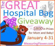 The Great Hospital Bag Giveaway: Win Over $800 in Prizes for Mom and Baby {And a Few for Dad, Too}!