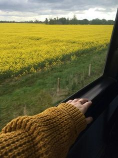 Travel Inspiration Tattoo - - New Zealand Travel Photography - - Travel Aesthetic, Aesthetic Photo, Aesthetic Pictures, Simple Aesthetic, Girl Photo Poses, Girl Photography Poses, Travel Photography, Tumblr Travel, Profile Pictures Instagram