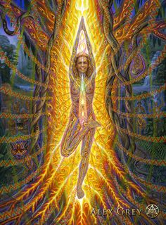 The official website of visionary artist Alex Grey. Alex Grey Paintings, Beautiful Paintings, Alex Gray Art, Art Visionnaire, Eugenia Loli, Psy Art, Process Art, Visionary Art, American Artists