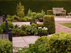 Garden Design based on foliage structure with white accent planting