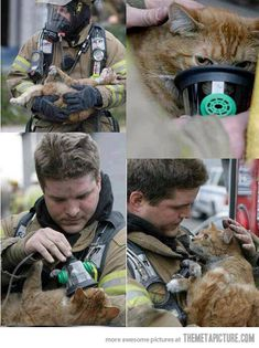 Firefighter saving a cat- heart actually mets at this ❤ ❤
