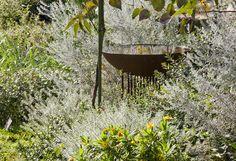 taylor cullity lethlean / native garden, adelaide botanic gardens