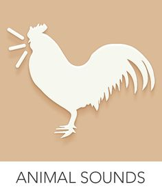 Kids press on animals to reveal animal sounds. Great for toddlers who are just starting to learn what noises animals make. Cause And Effect Games, Phase 1 Phonics, Types Of Animals, Games For Toddlers, Farm Animals, Wild Animals, Letter Sounds, Best Apps, Eyfs