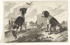 Twee zittende honden, Gerrit van Battem (de Jonge), 1650 - 1700