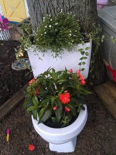 Turn your old toilet into a flower pot!