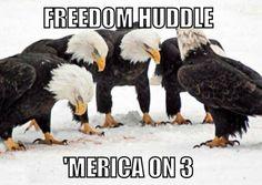 Freedom huddle!!