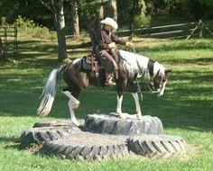 Cornerstone Horsemanship - Trail Challenge in Virginia