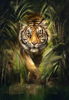 Tiger Painting Art, HD Animals Wallpapers Photos and Pictures ID animal animals background iphone wallpaper wallpaper iphone you didn't know existed planet animal drawings and white animal photography animals baby animals animals animals Tiger Wallpaper Iphone, Wild Animal Wallpaper, Iphone Wallpapers, Tiger Artwork, Tiger Painting, Painting Art, Tiger Drawing, Big Cats Art, Cat Art