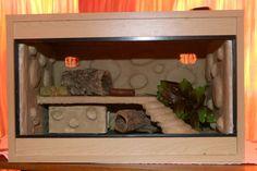 Loooove this leopard gecko enclosure.