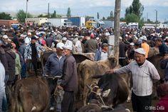 Mercado de animales de #Karakol, en Kirguizistan, uno de los mercados más auténticos de #AsiaCentral