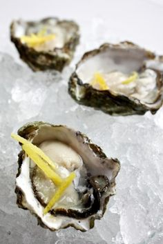 Oysters Gin and Tonic Recipe. My hubby would love this recipe. Me not soo much. :/