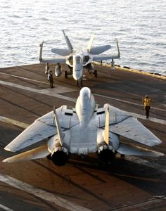 United States Navy, F-14 Tomcat and F/A-18 Hornet stare down.