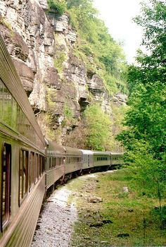 Take a Train Trip with Tennessee Central Railway Museum Nashville Things To Do, Nashville Vacation, Tennessee Vacation Kids, Franklin Tennessee, Nashville Tennessee, East Tennessee, Nashville Hiking, Places To Travel, Places To See