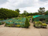 Our nursery - Photo albums - The Otter Nursery - Ottershaw, Surrey